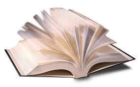2011 Book Report