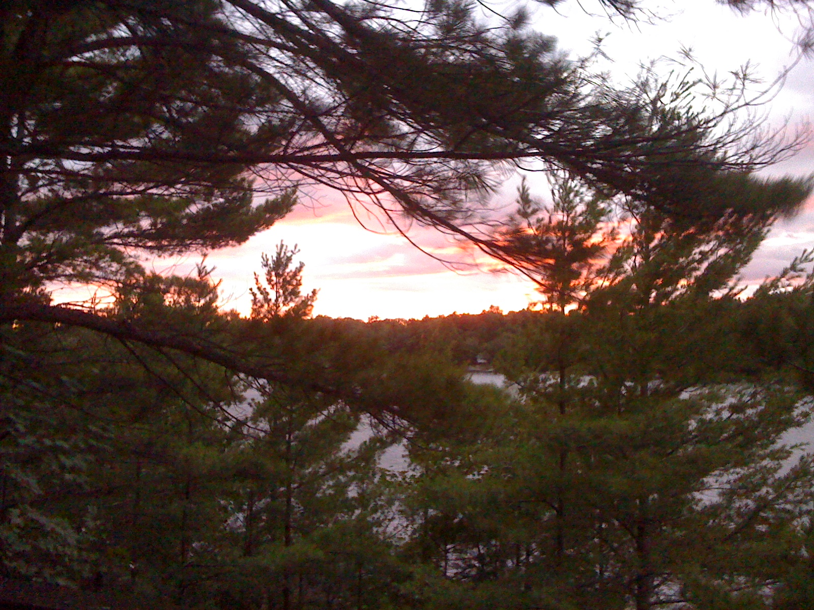 Healy Lake
